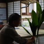 華道を嗜むスタッフが母屋の座敷に花を生けました