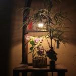 七夕の笹飾りとアジサイ