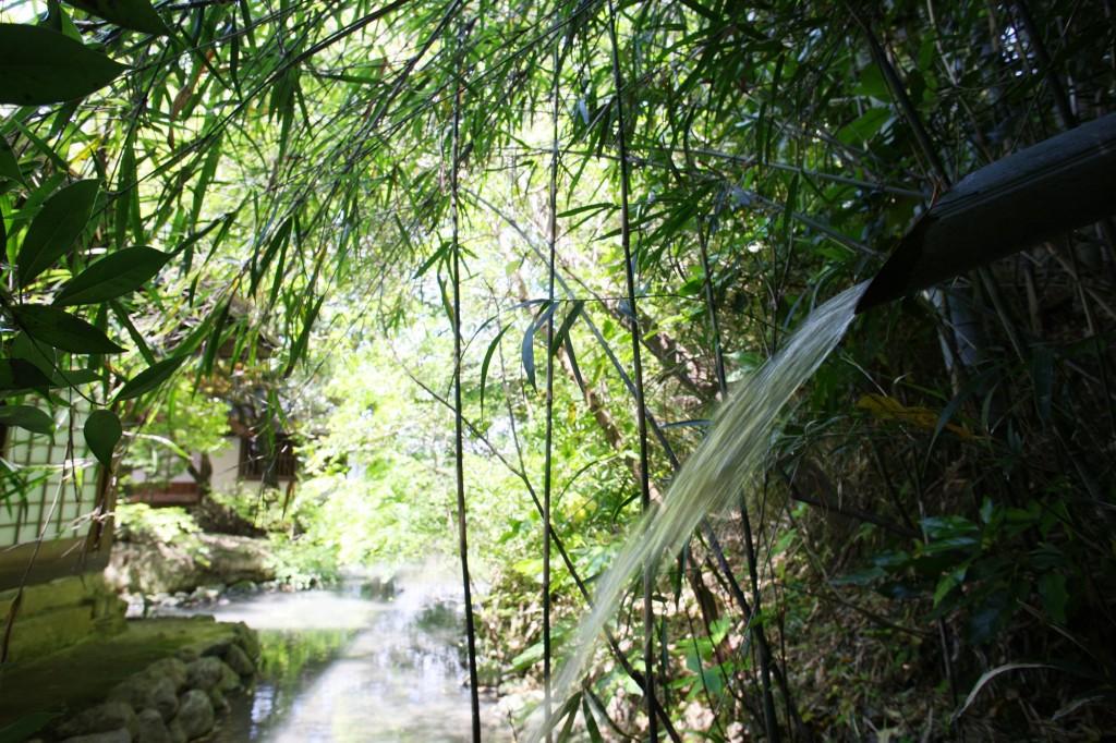 絶えず池に流れる山の水