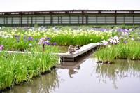 加茂荘花鳥園4